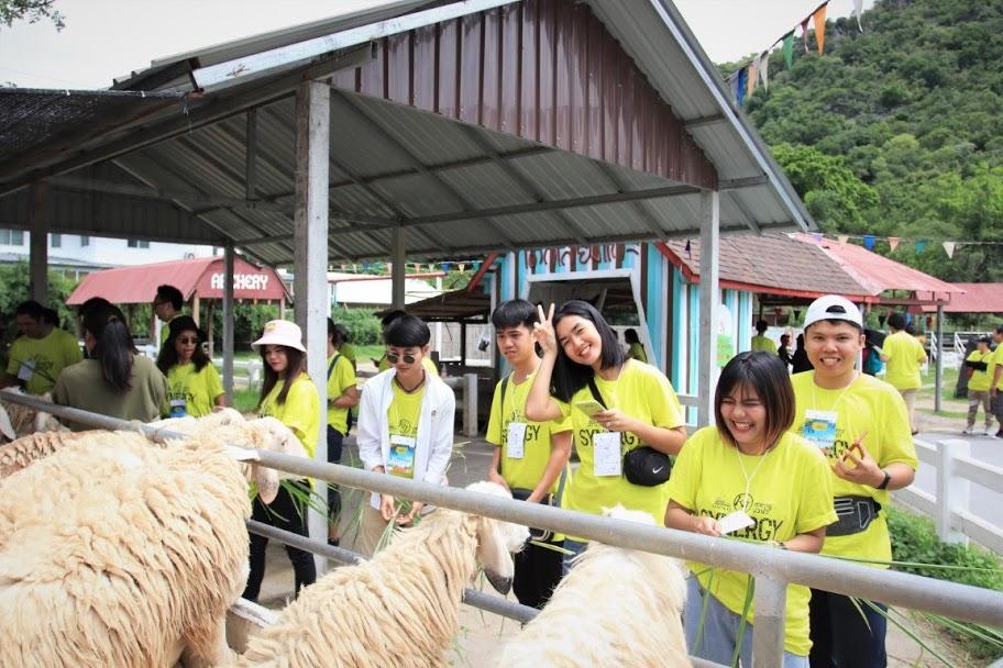 ท่องที่ยวชะอำหัวหินๅ@swiss sheep farm